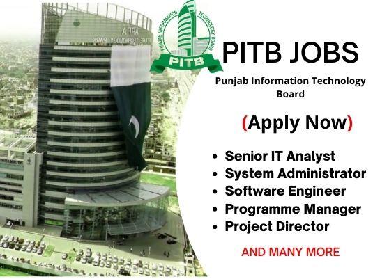 Punjab Information Technology Board Jobs 2021